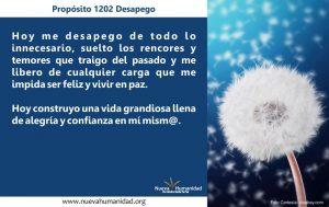 Propósito 1202 Desapego