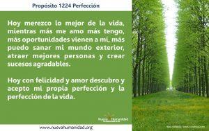 Propósito 1224 Perfección