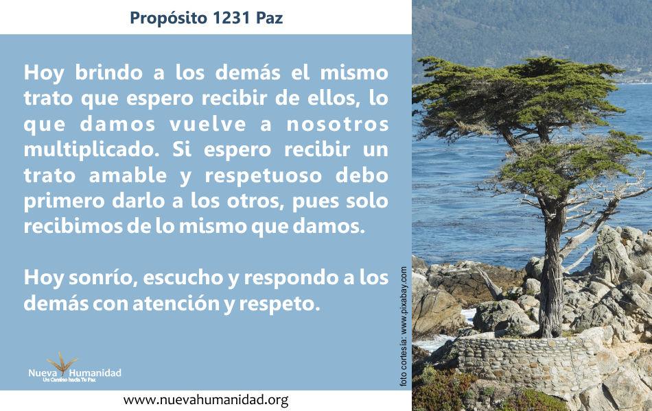 Propósito 1231 Paz