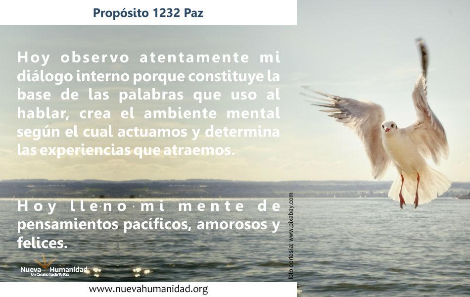Propósito 1232 Paz