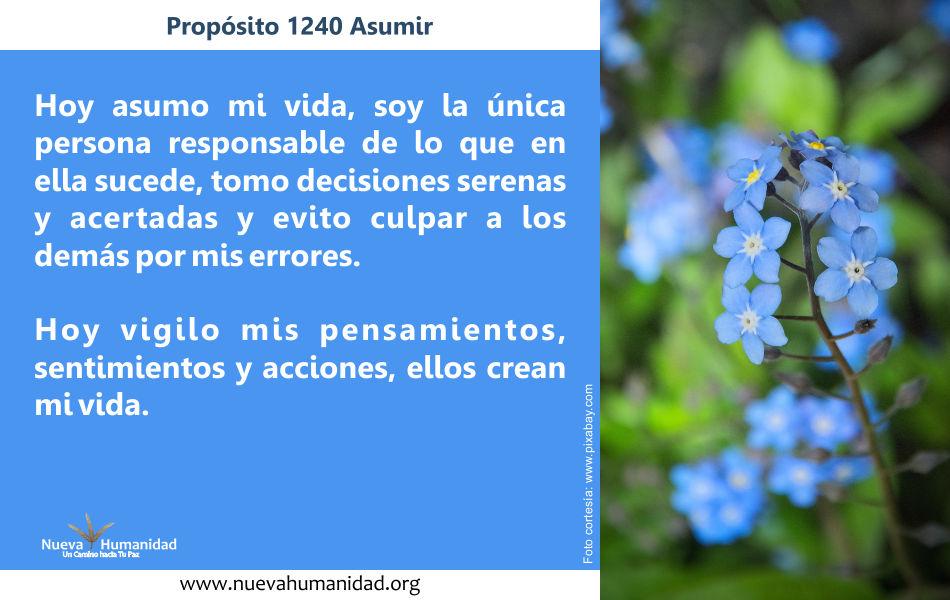Propósito 1240 Asumir