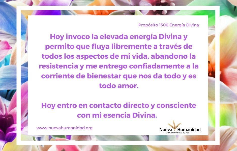 Propósito 1306 Energía divina