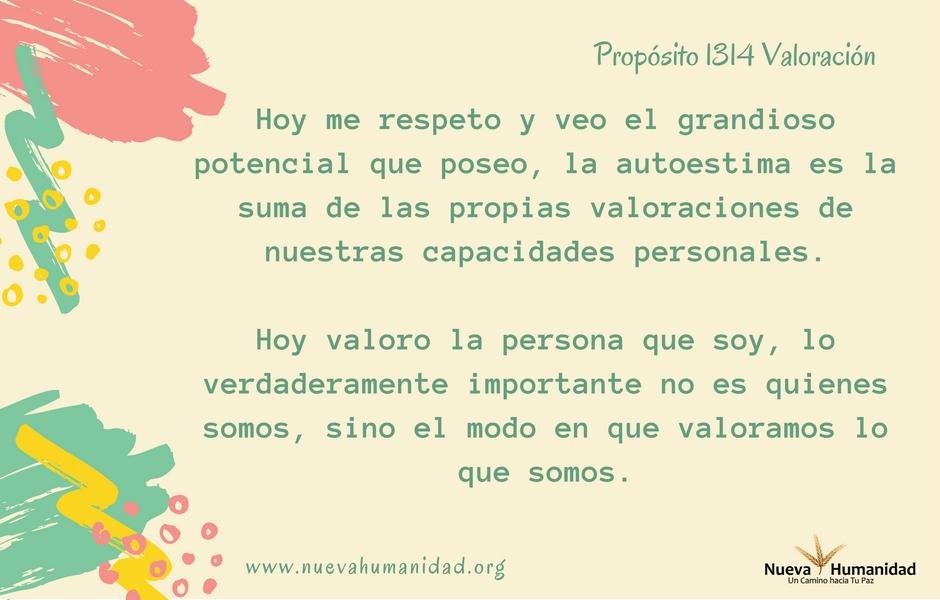 Propósito 1314 Valoración