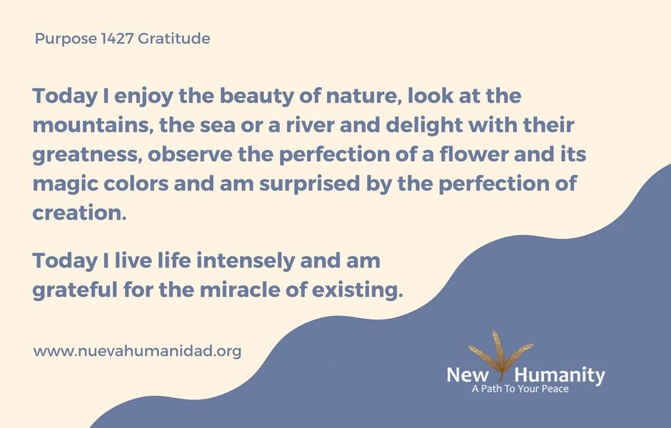 Nueva Humanidad Purpose 1427 Gratitude