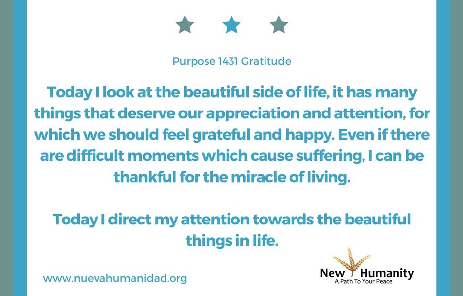 Nueva Humanidad Purpose 1431 Gratitude