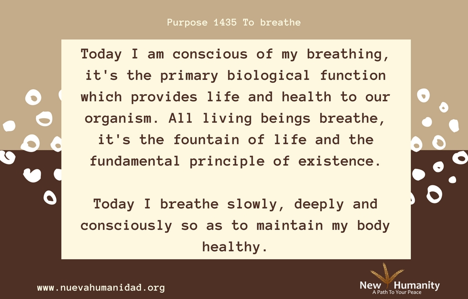 Nueva Humanidad Purpose 1435 To Breathe