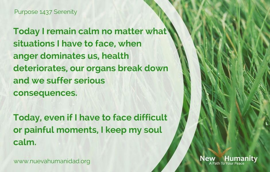 Nueva Humanidad Purpose 1437 Serenity