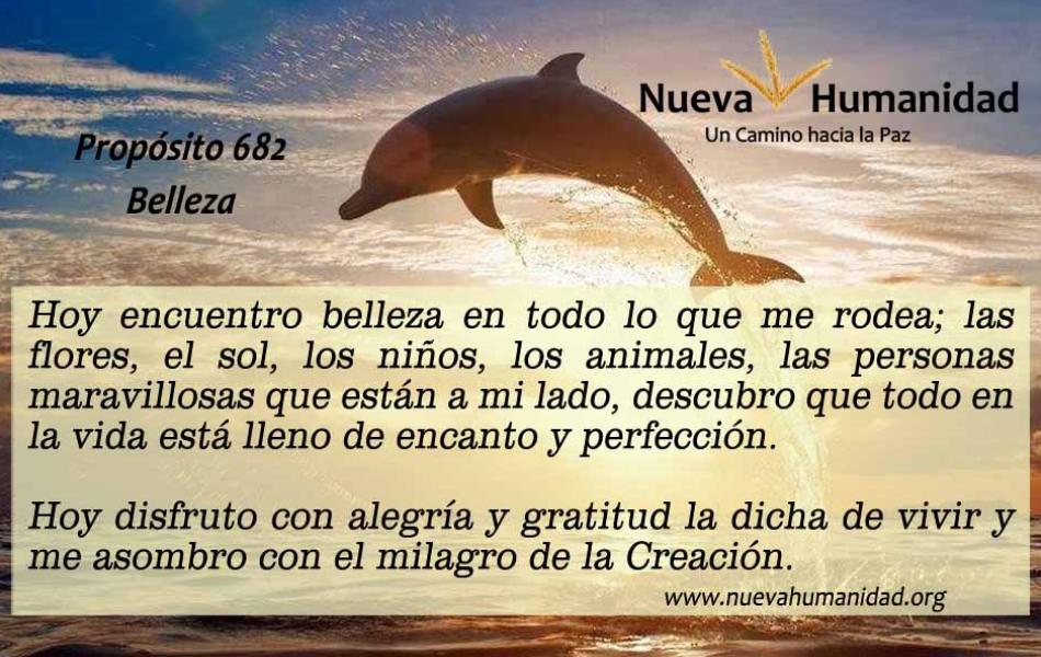 Nueva_Humanidad-Proposito-682-Belleza