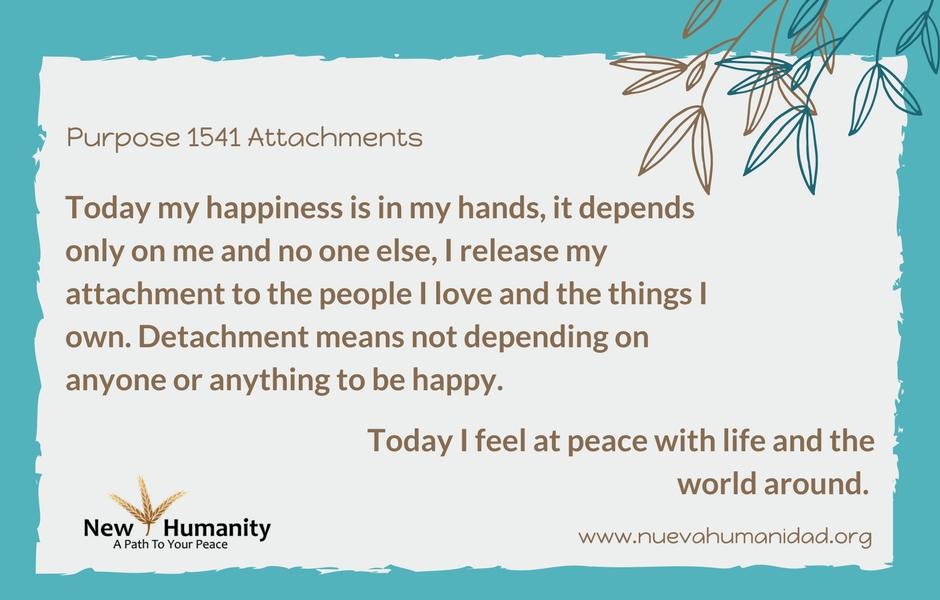 Purpose 1541 Attachments