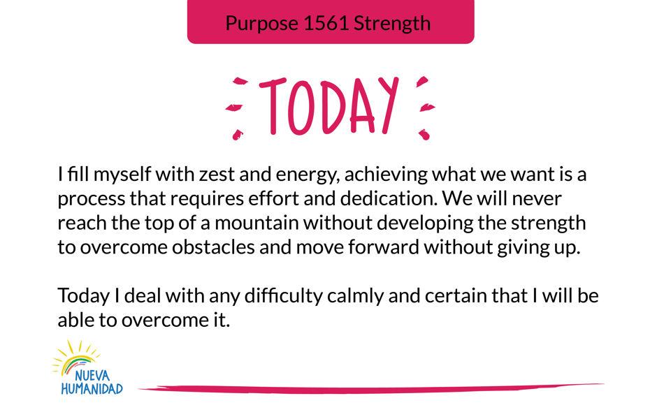 Purpose 1561 Strength