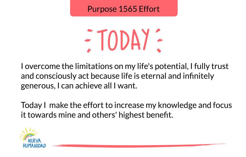 Purpose 1565 Effort