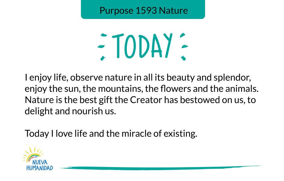 Purpose 1593 Nature