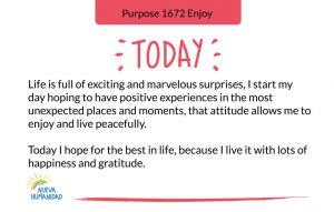 Purpose 1672 Enjoy