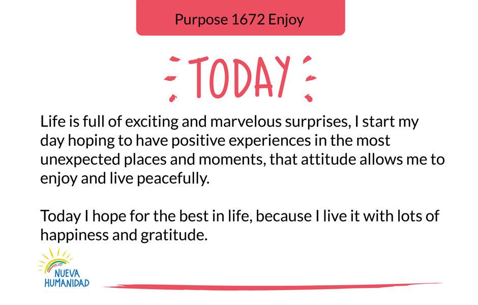 Purpose 1672 Enjoy