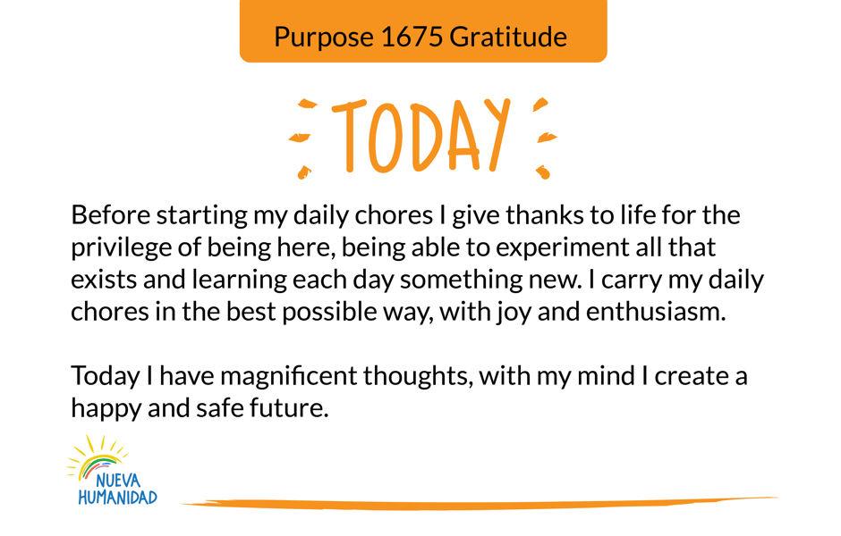 Purpose 1675 Gratitude