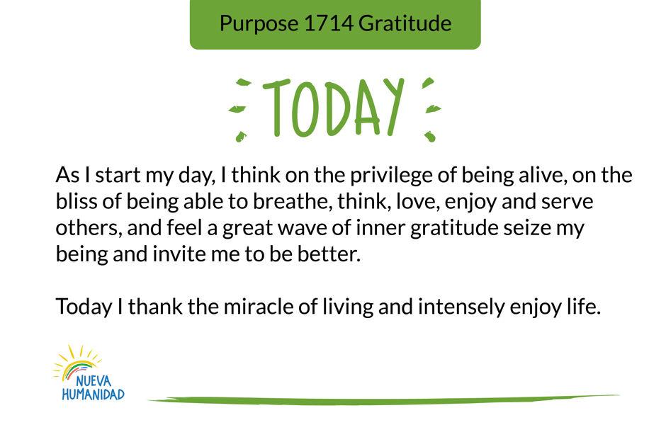 Purpose 1714 Gratitude