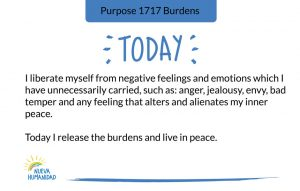Purpose 1717 Burdens