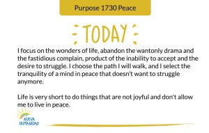 Purpose 1730 Peace