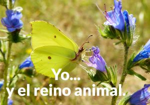 Yo... y el reino animal.