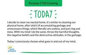 Purpose 1750 Cleaning