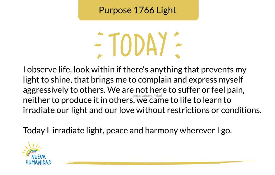 Purpose 1766 Light