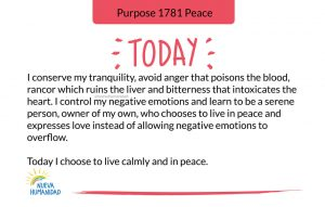 Purpose 1781 Peace