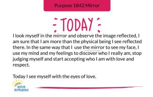 Purpose 1842 Mirror
