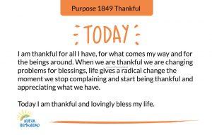 Purpose 1849 Thankful