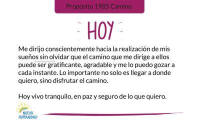 Propósito 1985 Camino