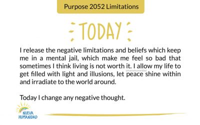 Purpose 2052 Limitations