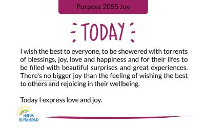 Purpose 2055 Joy