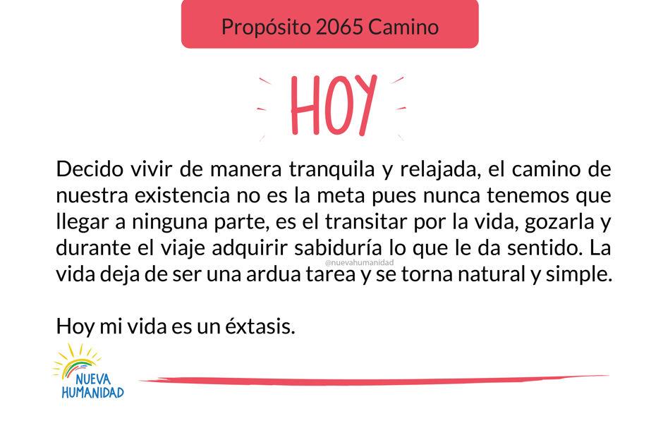 Propósito 2065 Camino