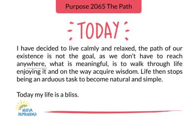Purpose 2065 The Path