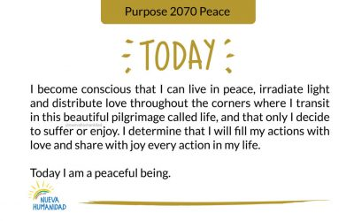 Purpose 2070 Peace