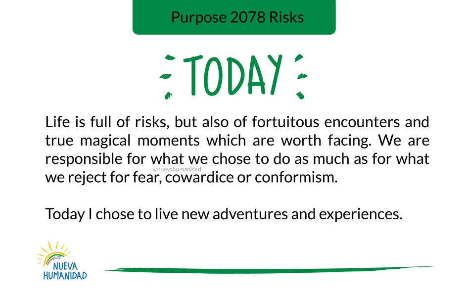 Purpose 2078 Risks