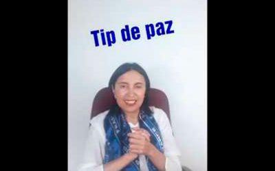 Tip de Paz 15