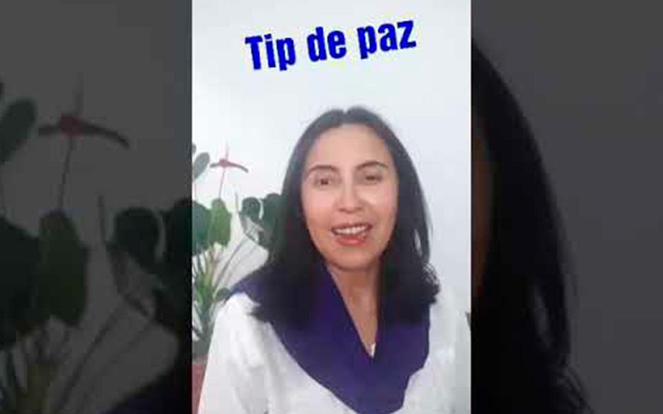 Tip de Paz 7