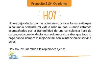Propósito 2104 Opiniones
