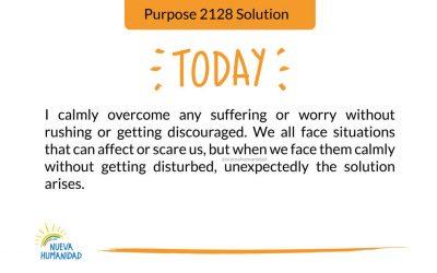 Purpose 2128 Solution