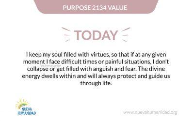 Purpose 2134 Value