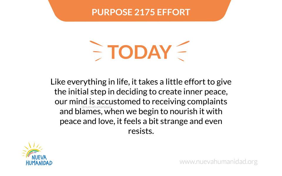 Purpose 2175 Effort