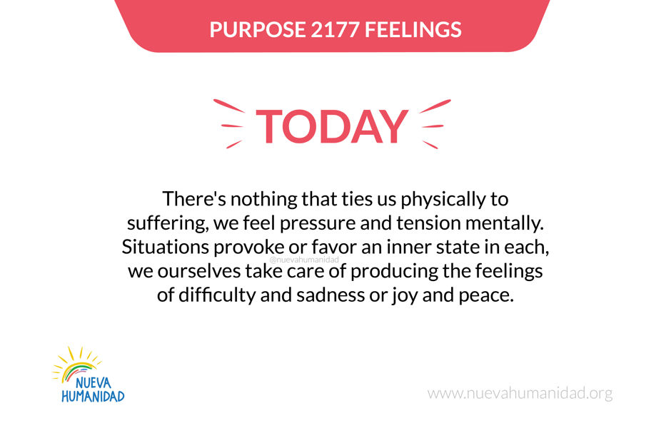 Purpose 2177 Feelings