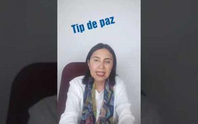 Tip de Paz 24