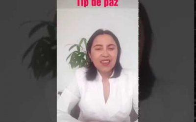 Tip de Paz 29