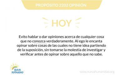 Propósito 2202 Opinión