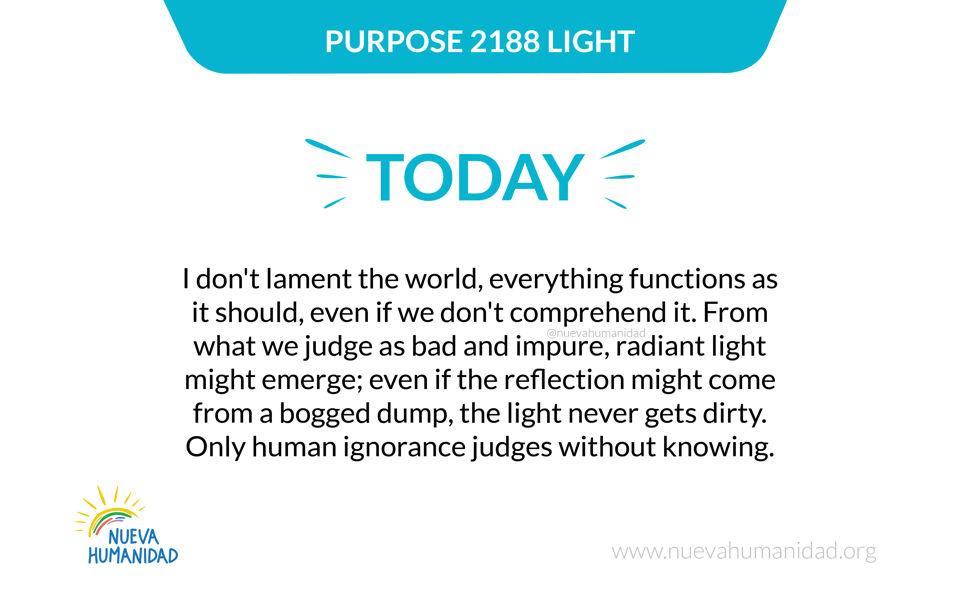 Purpose 2188 Light