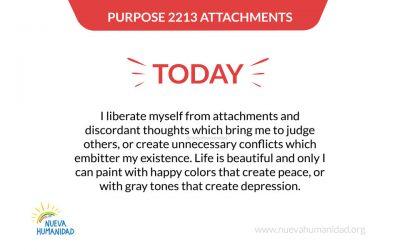 Purpose 2213 Attachments