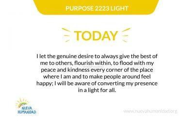 Purpose 2223 Light