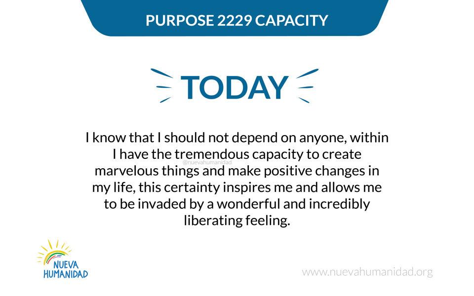 Purpose 2229 Capacity