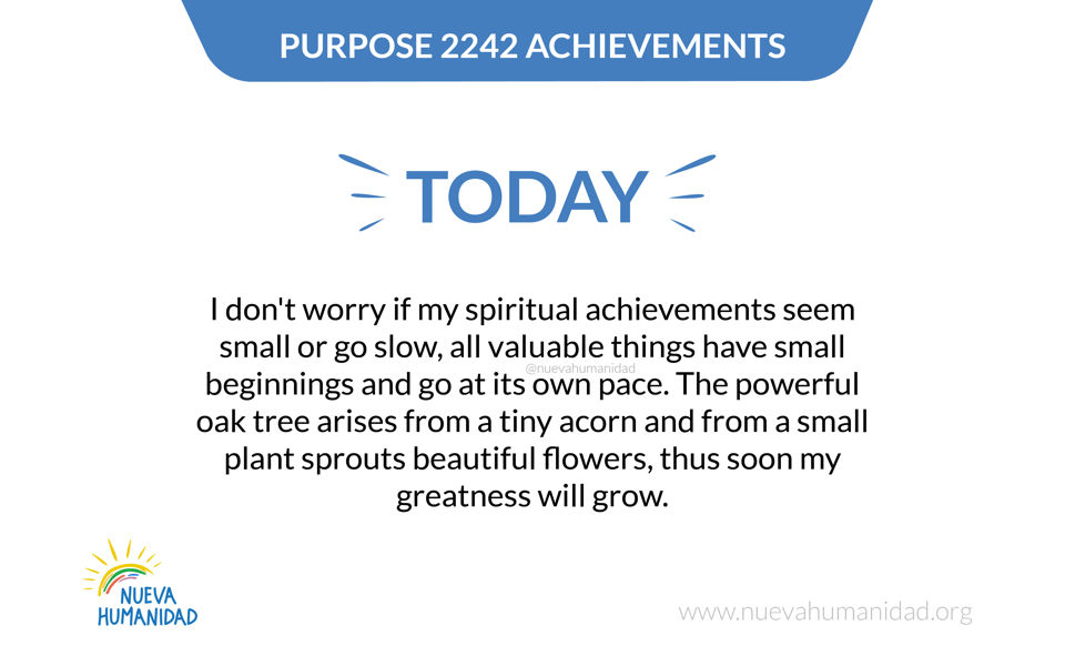 Purpose 2242 Achievements